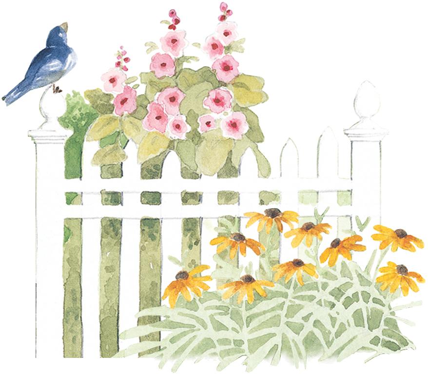 bird-fence.jpg
